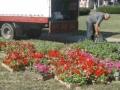 Площадь Независимости украшают цветами