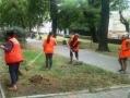 Одесский Горзелентрест продолжает работы по благоустройству зеленых зон